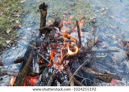 bon fire in catskill mountain #1024255192