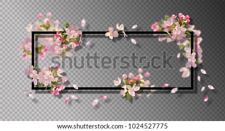 Abstract frame with spring flowers. Vector background with spring cherry blossom, falling petals and blurred transparent elements