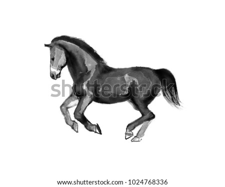 Sumi-e illustration of a horse running, moving to the left. Oriental ink painting, isolated on white background.. Oriental ink painting, isolated on white background. #1024768336