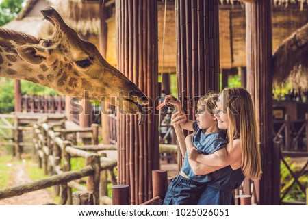 Happy mother and son watching and feeding giraffe in zoo. Happy family having fun with animals safari park on warm summer day. Royalty-Free Stock Photo #1025026051