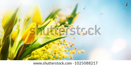 Flower spring background, 8 March, Easter Royalty-Free Stock Photo #1025088217