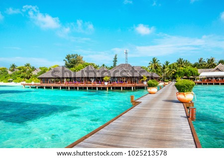 Wooden pier and exotic bungalow on the background of a sandy beach with tall palm trees, Maldives #1025213578