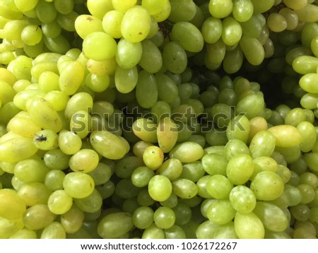 Close up many fresh green grapes with insect are sale in the local market #1026172267