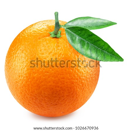 Orange fruit with orange leaves. Clipping path. #1026670936