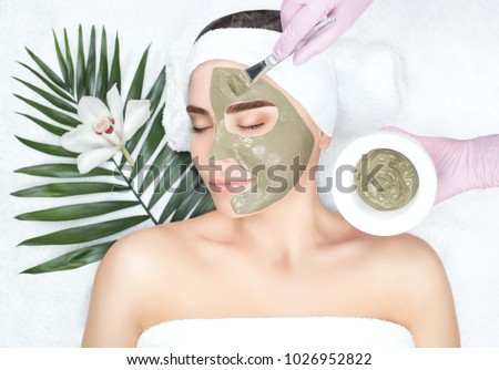 The procedure for applying a mask from clay to the face of a beautiful woman. Spa treatments and care of the face in the beauty salon. Royalty-Free Stock Photo #1026952822