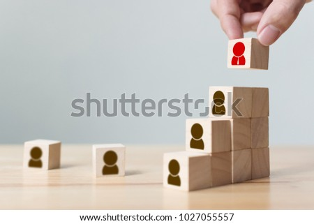 Human resources and talent management and recruitment business concept, Hand putting wood cube block on top staircase, Copy space #1027055557