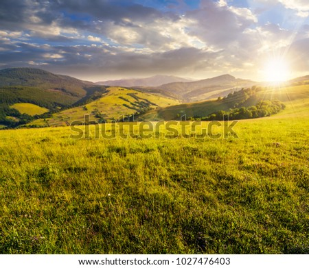 grassy meadow in mountains at sunset. beautiful summer countryside under the gorgeous sky #1027476403