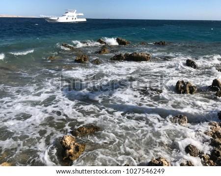 red sea, on the beach sand summer vacation, stony beach, Egypt #1027546249