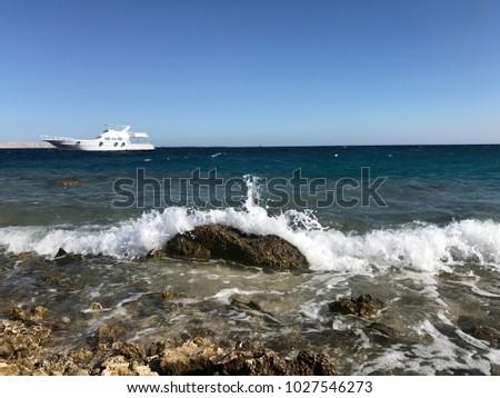red sea, on the beach sand summer vacation, stony beach, Egypt #1027546273
