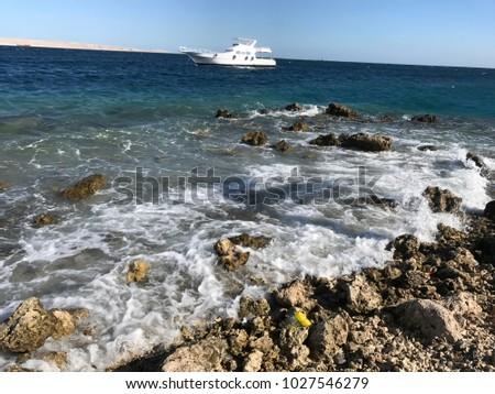 red sea, on the beach sand summer vacation, stony beach, Egypt #1027546279