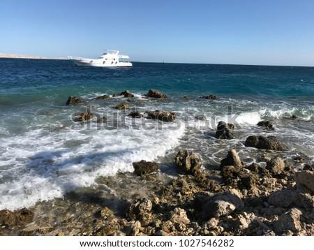 red sea, on the beach sand summer vacation, stony beach, Egypt #1027546282