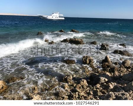 red sea, on the beach sand summer vacation, stony beach, Egypt #1027546291