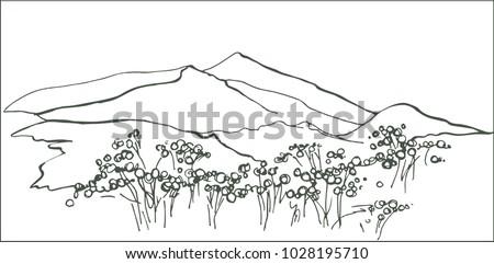 Landscape of South Korea. Korean mountains. Blooming azalea in the mountains. Chirisan Mountains #1028195710