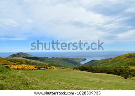 Panorama view of the ocean with a look at  the horizon in Akaroa, New Zealand #1028309935
