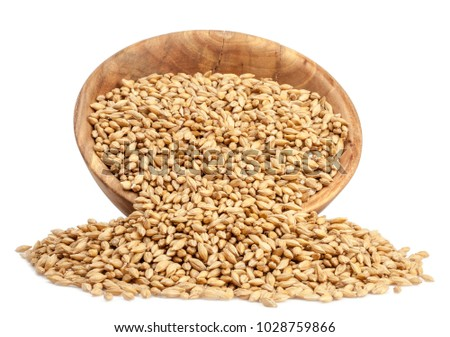 grains of barley in a wooden cup on a white background #1028759866