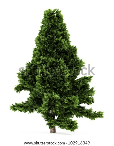 3d Scots Pine tree isolated over white #102916349