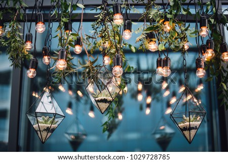 Florariums with stones and flowers hang among the lamps from the ceiling. Decor #1029728785