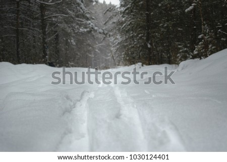 A snowy ski trail  leading to forest. Clouse-up #1030124401