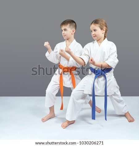 A girl and a boy in karategi stand in a karate rack Royalty-Free Stock Photo #1030206271