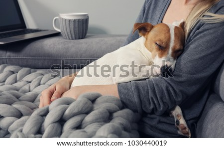 Cozy home, woman covered with warm blanket watching movie, hugging sleeping dog. Relax, carefree, comfort lifestyle. Royalty-Free Stock Photo #1030440019