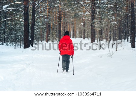 Nordic walking in winter forest, hiking woman #1030564711