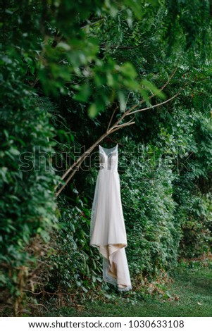 Beautiful White, Lace Wedding Dress Hanging in a Tree in the Woods #1030633108