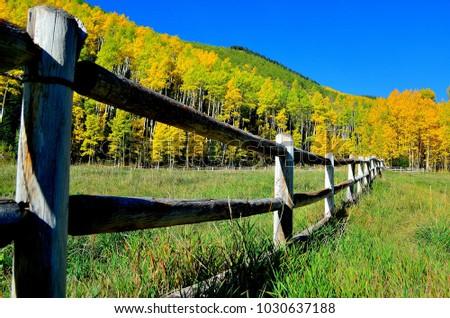Ashcroft Aspen Colorado #1030637188
