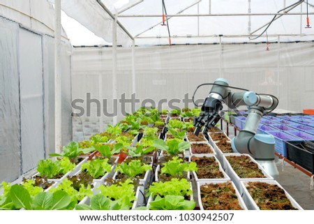Modern organic farmhouse adopts the technology of robotic industry to apply for used in vegetable plots to work and help harvest on  concept of Smart Farming  4.0 and Industry 4.0. Royalty-Free Stock Photo #1030942507