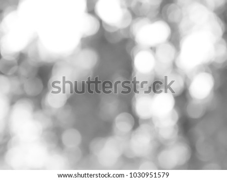 Gray bokeh background from nature, Bokeh gray from natural #1030951579