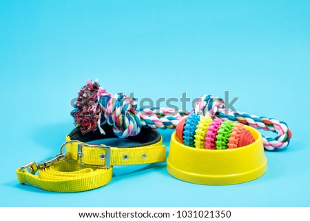 Bowl, collar with toy rope and bite rope for blue background. Product image for pet supplies. #1031021350