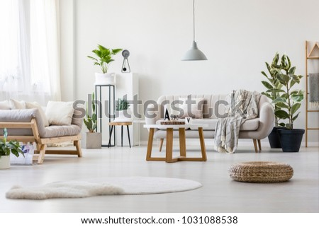 Stylish living room with two grey couches, fresh plants and wooden coffee table #1031088538