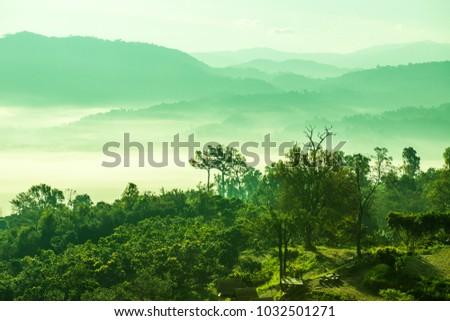 Beautiful Mountain View of Phu Langka National Park, Thailand. #1032501271