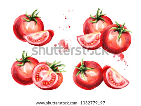 Ripe tomatoes set. Watercolor hand drawn illustration, isolated on white background #1032779197