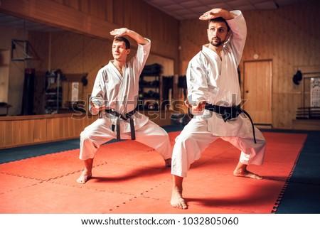 Martial arts masters training combat skill #1032805060