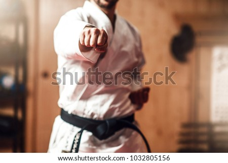 Martial arts master on fight training in gym #1032805156