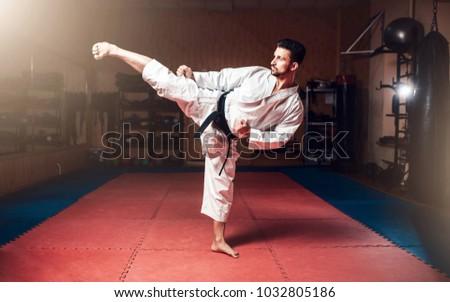 Martial arts, man in white kimono with black belt Royalty-Free Stock Photo #1032805186