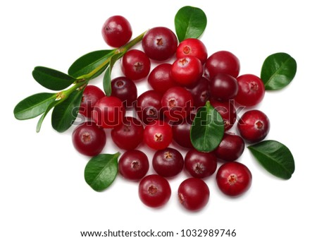 Cranberry with leaves isolated on white. With clipping path. macro #1032989746