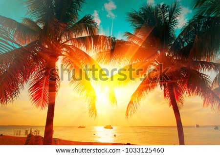 Sunset Beach with palm trees and beautiful sky landscape. Travel, Tourism, vacation concept background. Mexico. Paradise scene of Caribbean Island. Beautiful coconut palms silhouettes over orange sun #1033125460