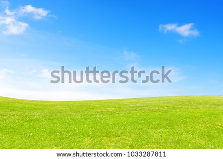 Meadow and sky #1033287811