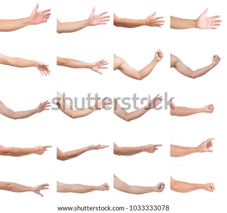 Set of man hands isolated on white background Royalty-Free Stock Photo #1033333078
