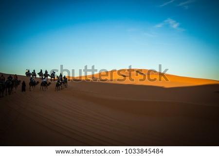 a walk on the desert #1033845484