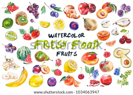 Watercolor painted collection of fruits. Hand drawn fresh food design elements isolated on white background. Royalty-Free Stock Photo #1034063947