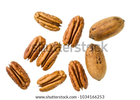 Brown pecans piles  with green leaves isolated on white. #1034166253