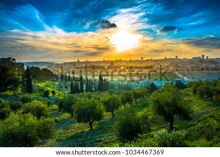 Beautiful sunset clouds over the Old City Jerusalem with Dome of the Rock, the Golden/Mercy Gate and St. Stephen's/Lions Gate; view from the Mount of Olives with olive trees in the foreground #1034467369