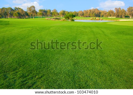 Bright grass of golf field #103474010