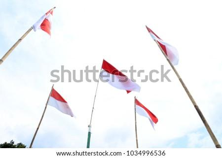 Indonesian flags flutter #1034996536