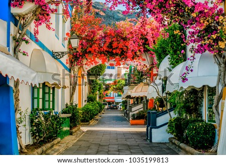 Street with white houses colonia shown in Puerto de Mogan, Spain. Favorite vacation place for tourists and locals on island. Little suburban street full of green and blooming trees. Jacaranda. #1035199813