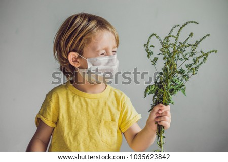 The boy is allergic to ragweed. In a medical mask, he holds a ragweed bush in his hands. Allergy to ambrosia concept. #1035623842