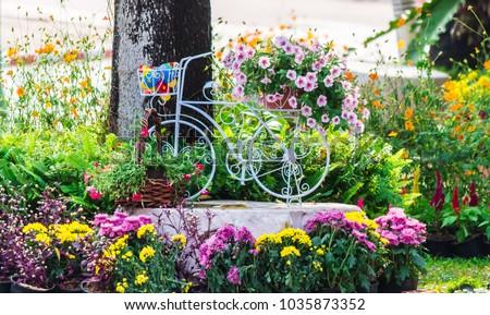 Vintage white bike flowerpot in home flowers garden on summer.   #1035873352