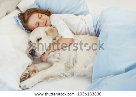 Beautiful little girl with golden retriever dog in a bed #1036133830
